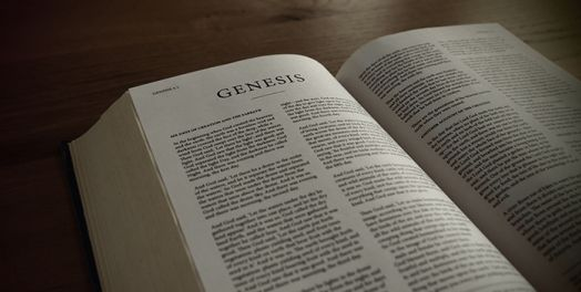 Genesis 1 11 And Work Bible Commentary Theology Of Work